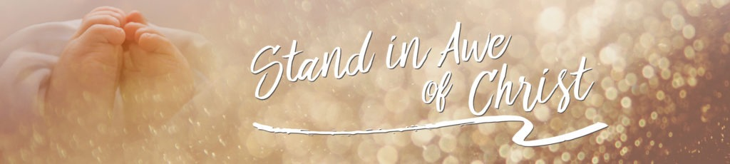 Stand in Awe web banner